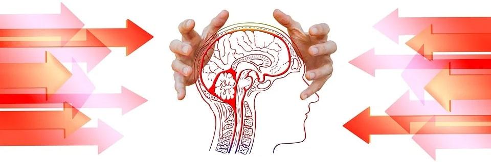 Rușinea toxică în creier